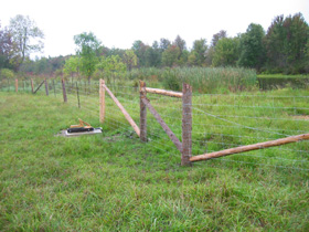 Cattle fencing protects shoreline. Water pump provides water.